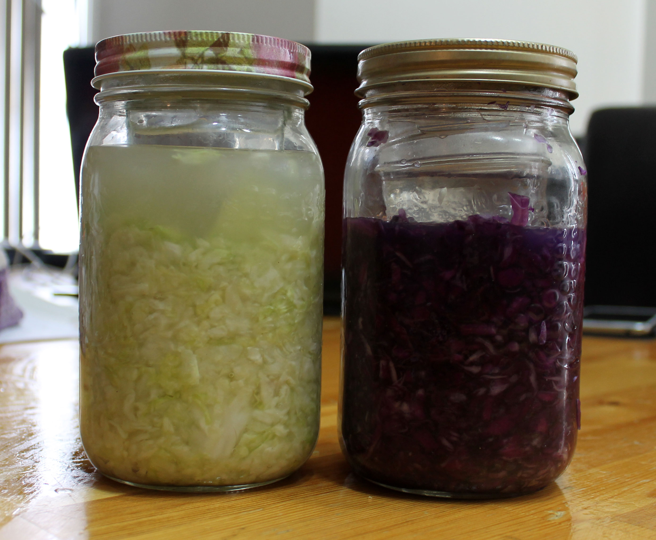 Simple Small Batch Sauerkraut – salixisme – AIP Living